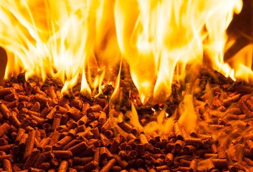 Eta Energy | Corso Biomassa